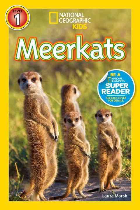 Meerkats By Marsh, Laura